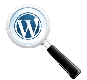 Поиск по сайту плагин wordpress. Форма, страница, настройка поиска wordpress